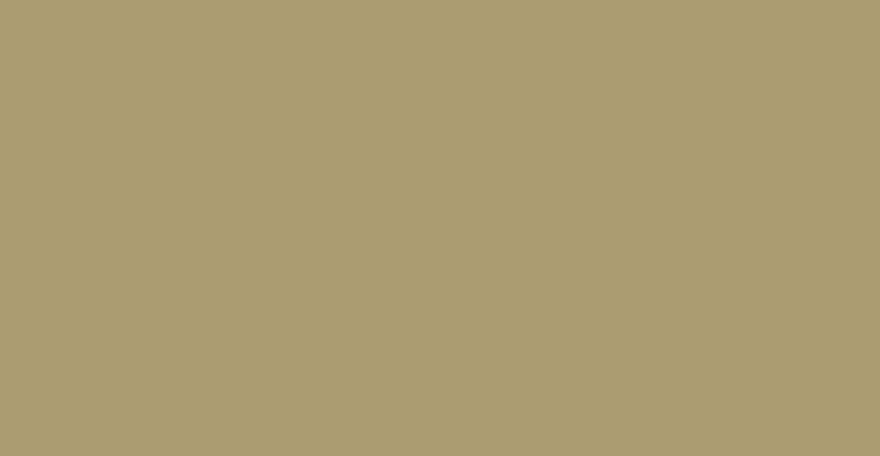 Community-Travic-Manion-Foundation